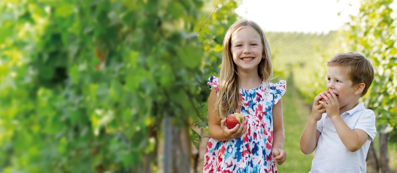Kinder stehen in einem Wingert und essen einen Apfel